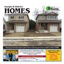 Guelph Tribune Homes Dec 7 2017