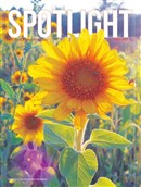 Spotlight Oct2016