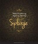 Splurge 2015