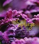 Splurge June 2014