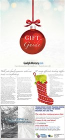 2015 Gift Guide 3