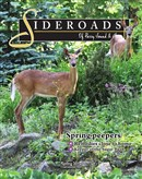 PS sideroads-spring