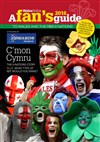 Fans Guide to the Six Nations 2016