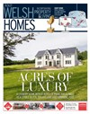 Welsh Homes 24/06/2017