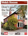 Welsh Homes 03/10/2015