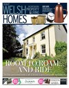 Welsh Homes 03/06/2017