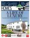Welsh Homes 29/04/2017