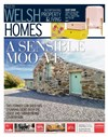 Welsh Homes 15/02/2020