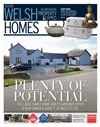Welsh Homes 14/04/2017