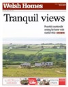 Welsh Homes 28/03/2015