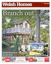 Welsh Homes 14/02/2015