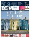 Welsh Homes 20/07/2019