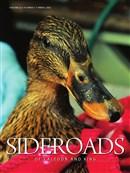 Sideroads Caeldon Spr 2016