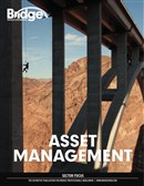 BDE Asset Management Supplement