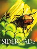 Sideroads Spring 2016