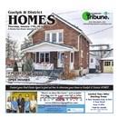 Guelph Tribune Homes Jan 17