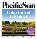 Pacific Sun Weekly July 1 2020