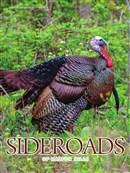 Sideroads Fall 2018