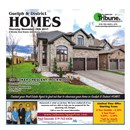 Guelph Tribune Homes Nov 16 2017